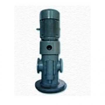 3GC20X4 Hydraulisk pumpa i lager